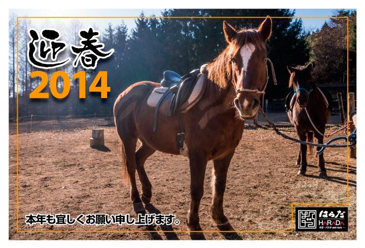 2014_ny
